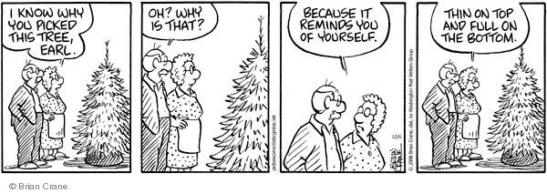 Comic Strip Brian Crane  Pickles 2008-12-06 baldness