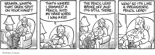 Comic Strip Brian Crane  Pickles 2008-12-08 lead