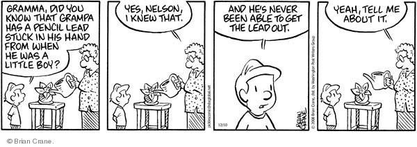 Comic Strip Brian Crane  Pickles 2008-12-10 lead