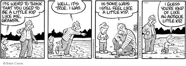 Comic Strip Brian Crane  Pickles 2008-12-12 grandchild