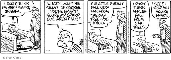 Comic Strip Brian Crane  Pickles 2008-12-29 grandchild