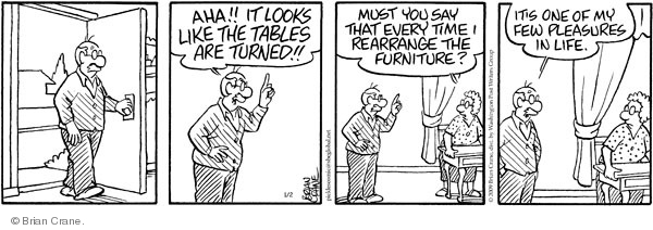 Comic Strip Brian Crane  Pickles 2009-01-02 married couple