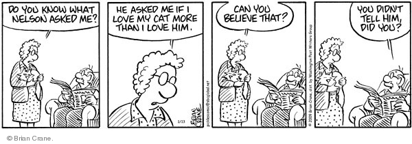 Comic Strip Brian Crane  Pickles 2009-01-13 married couple