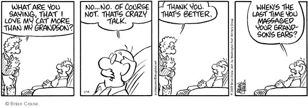 Comic Strip Brian Crane  Pickles 2009-01-14 married couple