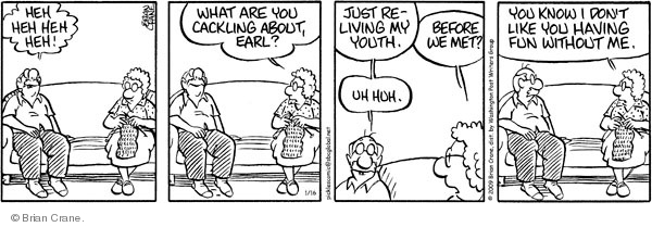 Comic Strip Brian Crane  Pickles 2009-01-16 married couple