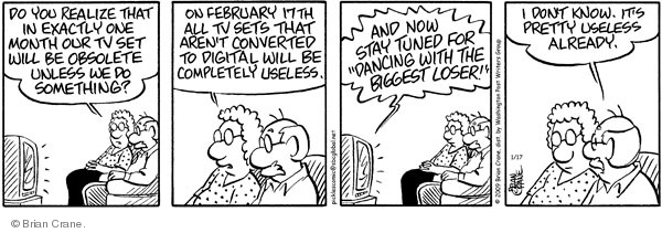 Comic Strip Brian Crane  Pickles 2009-01-17 analog