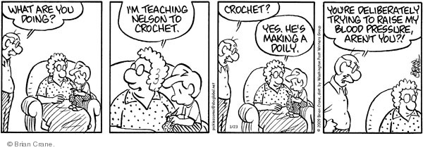 Comic Strip Brian Crane  Pickles 2009-01-23 raise
