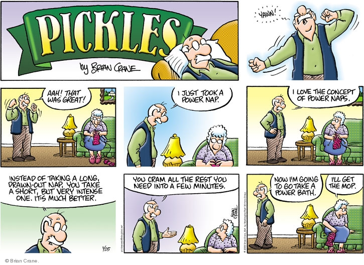 Comic Strip Brian Crane  Pickles 2009-01-25 mop