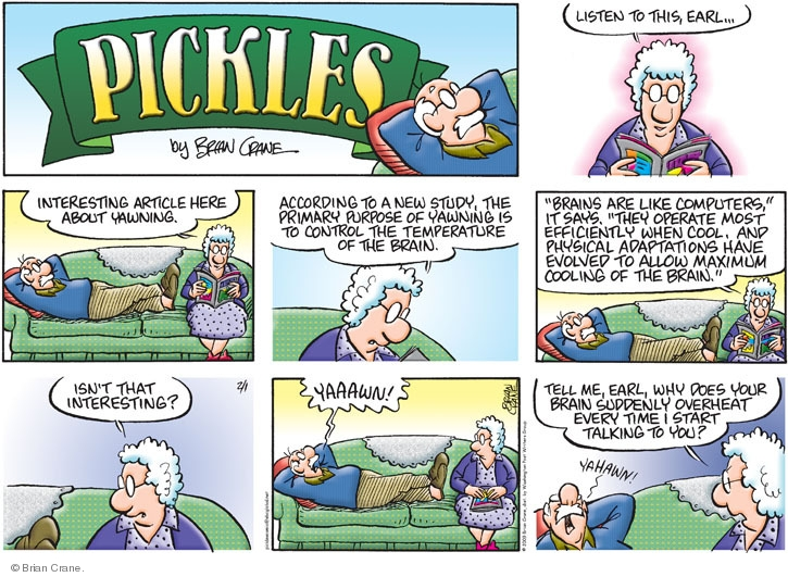Comic Strip Brian Crane  Pickles 2009-02-01 husband
