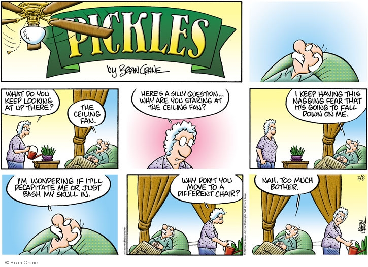 Comic Strip Brian Crane  Pickles 2009-02-08 husband