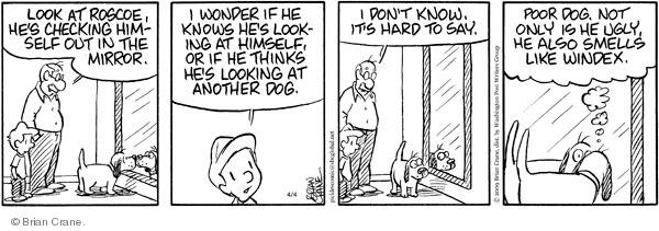 Comic Strip Brian Crane  Pickles 2009-04-04 recognition