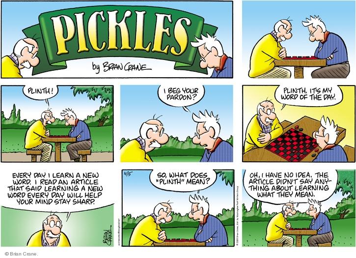 Comic Strip Brian Crane  Pickles 2009-04-05 memory