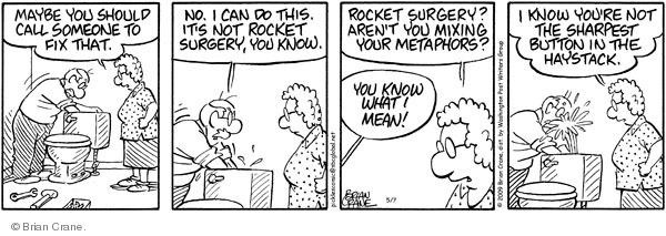 Comic Strip Brian Crane  Pickles 2009-05-07 husband