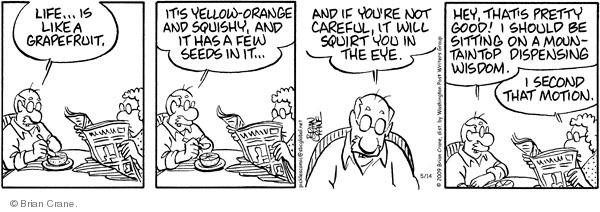 Comic Strip Brian Crane  Pickles 2009-05-14 husband