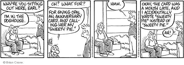 Comic Strip Brian Crane  Pickles 2009-05-27 husband and wife