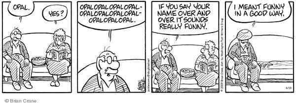 Comic Strip Brian Crane  Pickles 2009-06-13 good