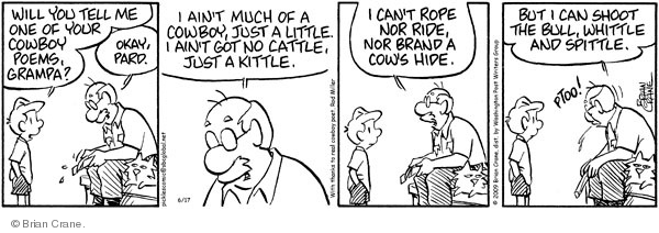 Comic Strip Brian Crane  Pickles 2009-06-17 poet