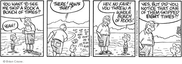 Comic Strip Brian Crane  Pickles 2009-06-26 beachcomber