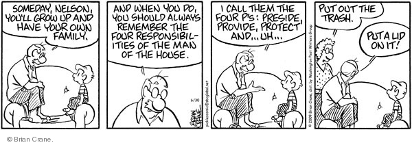 Comic Strip Brian Crane  Pickles 2009-06-30 responsibility