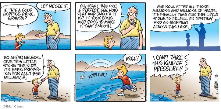 Comic Strip Brian Crane  Pickles 2009-07-05 rock