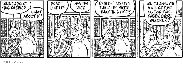 Comic Strip Brian Crane  Pickles 2009-07-15 husband and wife