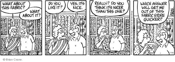 Comic Strip Brian Crane  Pickles 2009-07-15 husband