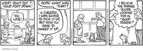 Cartoonist Brian Crane  Pickles 2009-07-31 cheerio