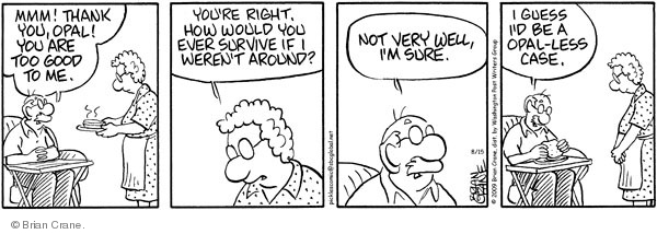 Comic Strip Brian Crane  Pickles 2009-08-15 husband and wife