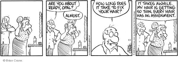 Comic Strip Brian Crane  Pickles 2009-09-03 groom