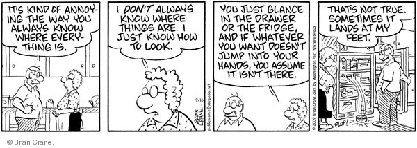 Comic Strip Brian Crane  Pickles 2009-09-16 husband