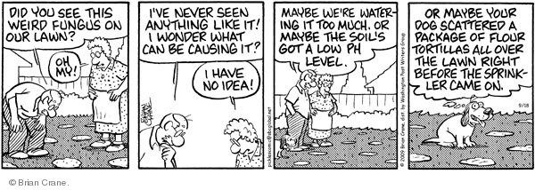 Comic Strip Brian Crane  Pickles 2009-09-18 level