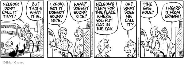 Comic Strip Brian Crane  Pickles 2009-10-08 etiquette