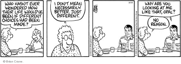 Comic Strip Brian Crane  Pickles 2009-10-15 reflect