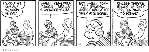 Comic Strip Brian Crane  Pickles 2009-10-21 bad memory