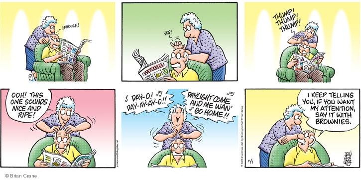 Comic Strip Brian Crane  Pickles 2009-11-01 song