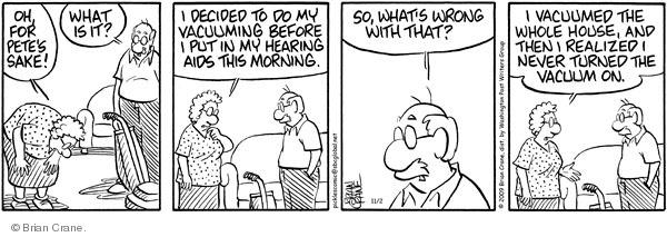 Comic Strip Brian Crane  Pickles 2009-11-02 elderly woman