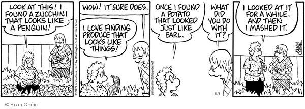 Comic Strip Brian Crane  Pickles 2009-11-03 zucchini