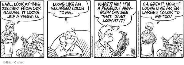 Comic Strip Brian Crane  Pickles 2009-11-05 zucchini