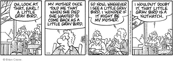 Comic Strip Brian Crane  Pickles 2009-11-16 mother-in-law