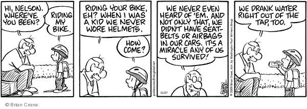 Comic Strip Brian Crane  Pickles 2009-11-27 bicycle seat