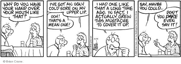 Comic Strip Brian Crane  Pickles 2009-11-30 blemish