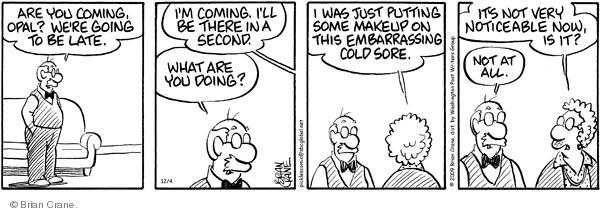 Comic Strip Brian Crane  Pickles 2009-12-04 late