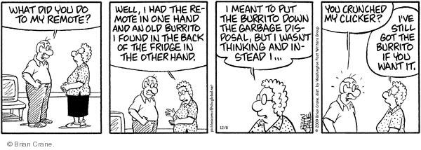Comic Strip Brian Crane  Pickles 2009-12-08 forgetfulness