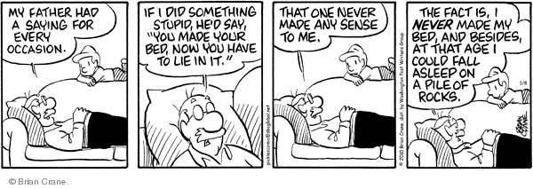 Comic Strip Brian Crane  Pickles 2010-01-08 occasion