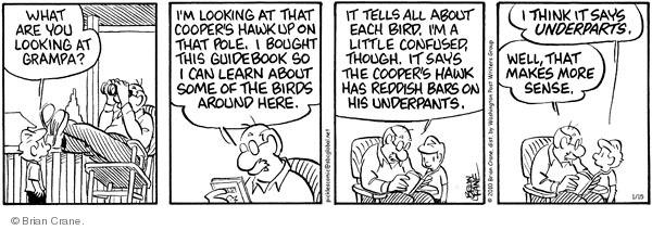 Comic Strip Brian Crane  Pickles 2010-01-15 buy