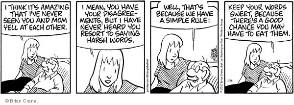 Comic Strip Brian Crane  Pickles 2010-01-16 mom