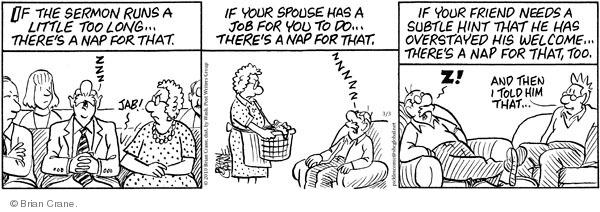 Comic Strip Brian Crane  Pickles 2010-03-03 software