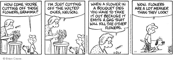 Comic Strip Brian Crane  Pickles 2010-03-08 houseplant