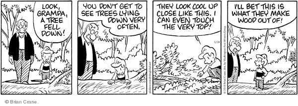 Comic Strip Brian Crane  Pickles 2010-03-18 forestry