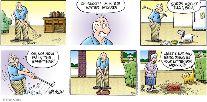 Comic Strip Brian Crane  Pickles 2010-03-28 in water